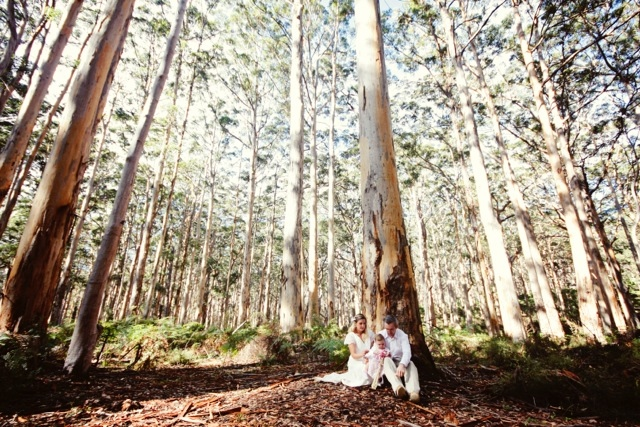 Elope Boranup Forest magical day