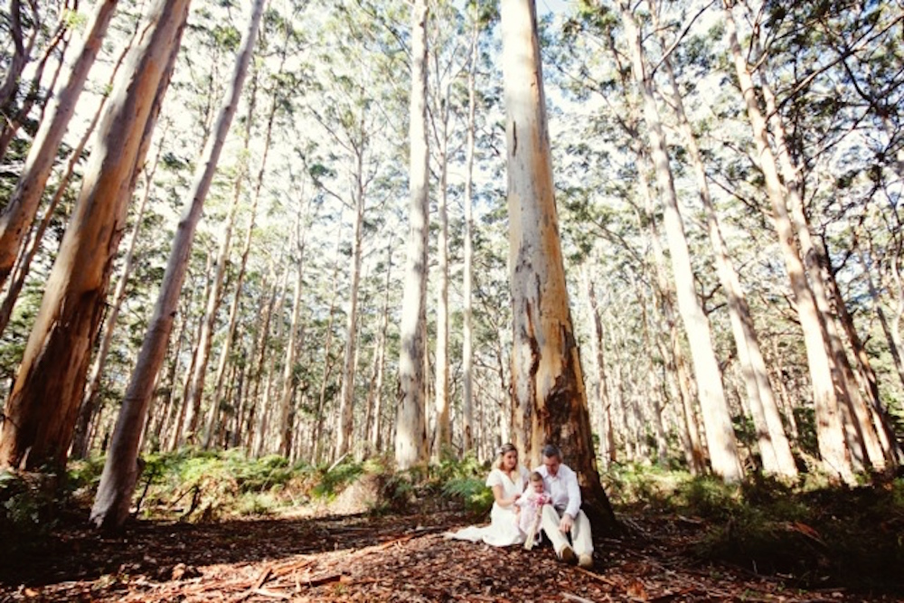 Boranup Forest wedding Margaret River