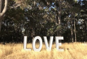 By the forest / LOVE sign